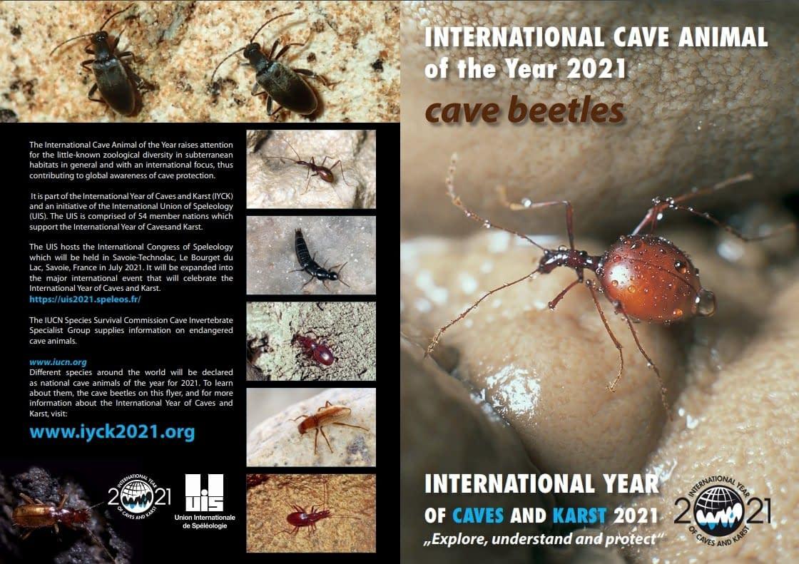 , Rok 2021 je Medzinárodným rokom jaskýň a krasu, Slovenská speleologická spoločnosť