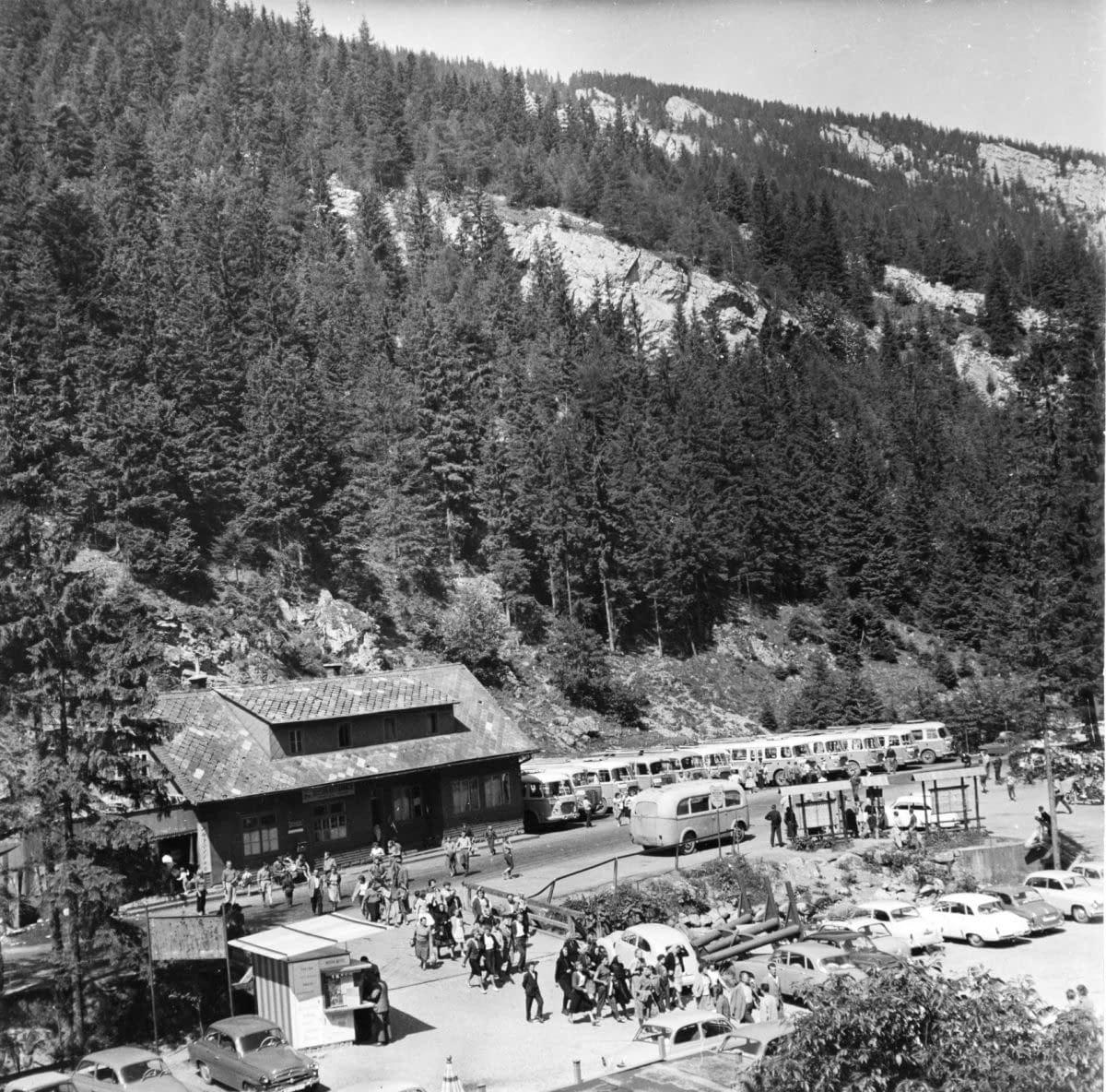 , Sto rokov po objave Jaskyne slobody v Demänovskej doline, Slovenská speleologická spoločnosť