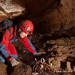 , Domica, Slovenská speleologická spoločnosť