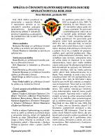 Vyrocna-sprava-SSS